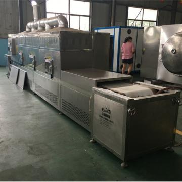 New Technology Meat Drumstick Microwave Degreasing Sterilization Device