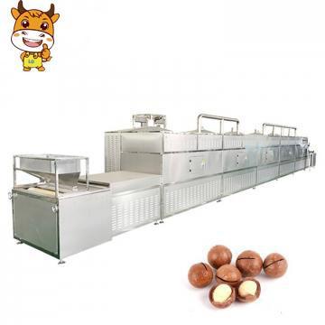 Microwave Macadamia Drying Machine Macadamia Nut Roasting Machine